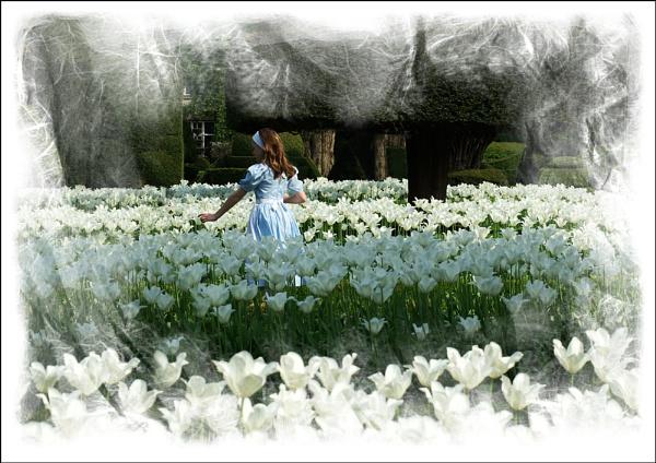Alice in Wonderland by sueriley