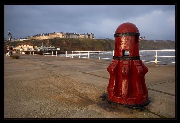 Whitby Dalek by Martin54