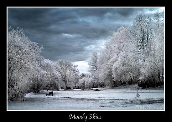 Moody Skies by mialewis