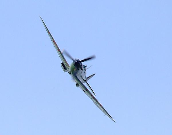 Spitfire by Georgie