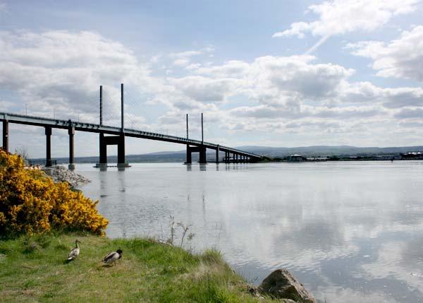 A Bridge by Frase