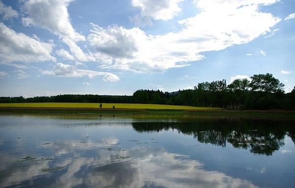 pond in south bohemia by fasfoto
