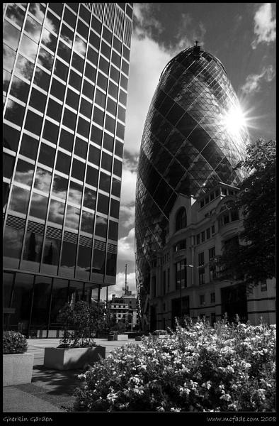 Gherkin Garden by ade_mcfade