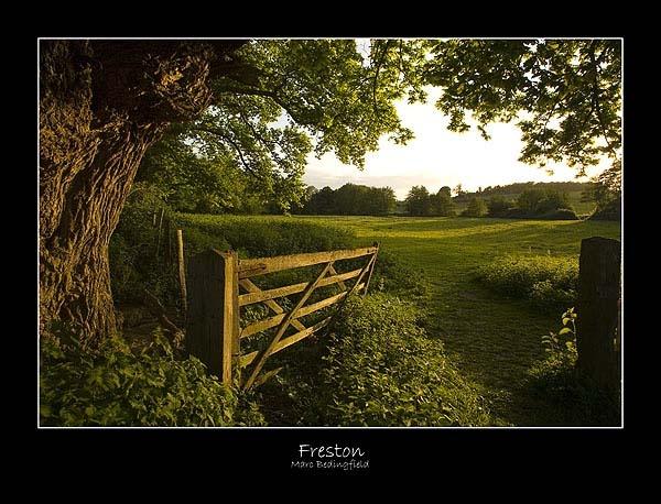 Freston by MarcB