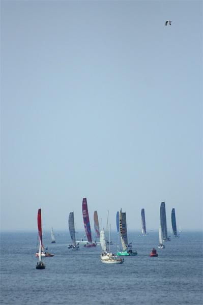 The Artemis Transat Race by phil_24