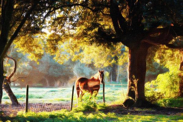 Holkham Horse by baldsparky