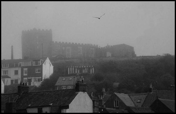 Misty Witby by DarkAngel