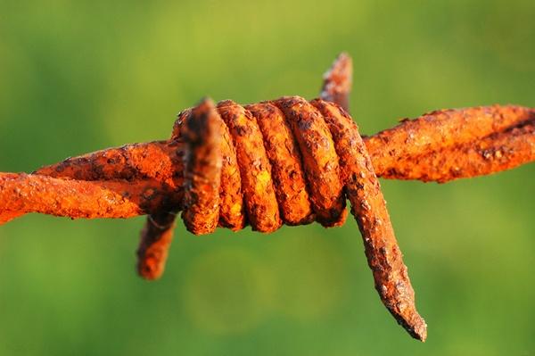 Rust by sarmour
