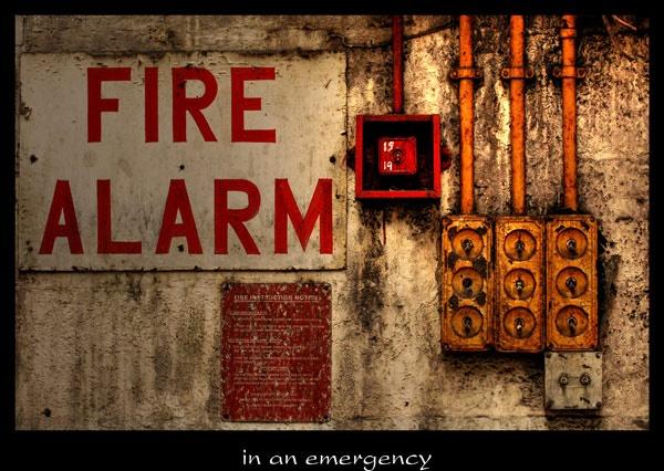 in an emergency by ducatifogarty