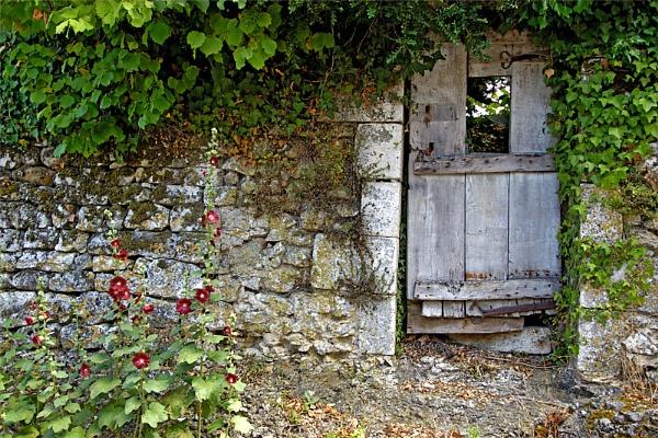 Garden Gate and Hollyhocks by Lynn_West