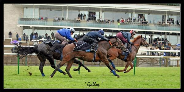 Gallop by emefbee