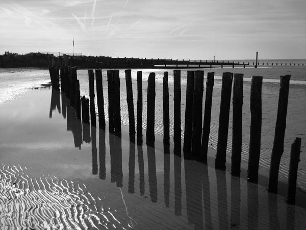The sticks! by julzt