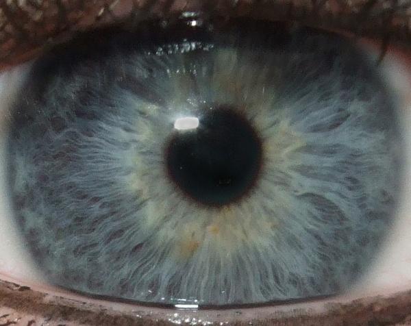 Eye spy by DarkAngel