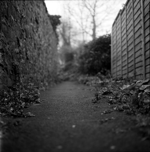 Alley by Skatershrew