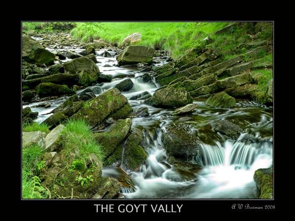 Goyt Vally by sawdust