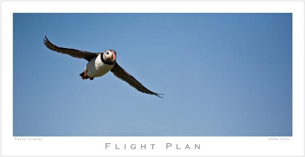 Flight Plan by sherlob