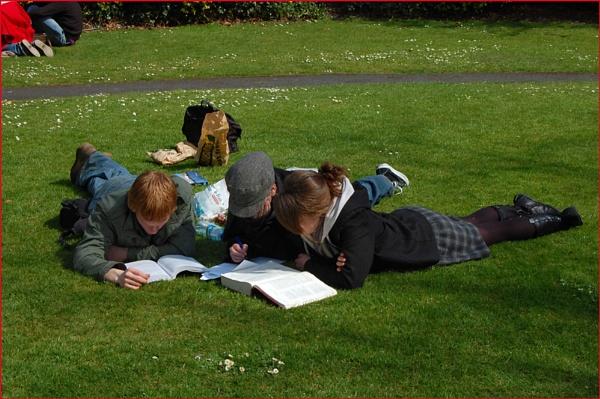 Dubliners 18 - Homework by mrswoolybill
