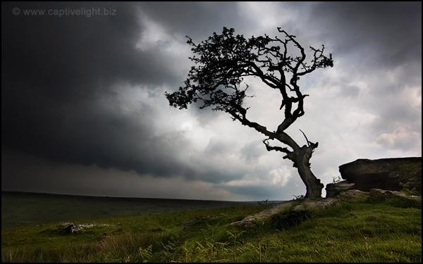 Stormy Dartmoor by Miles Herbert