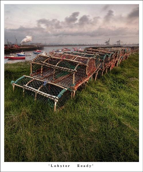 Lobster Ready by oll1e