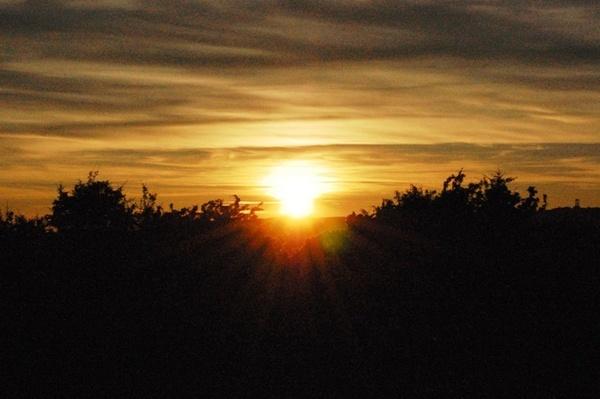 Sunset Del by XxJenny_SheaxX
