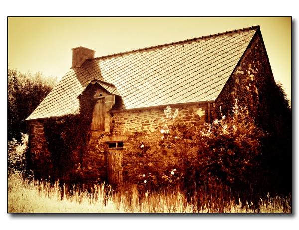 Old barn - new roof by Steve Cribbin