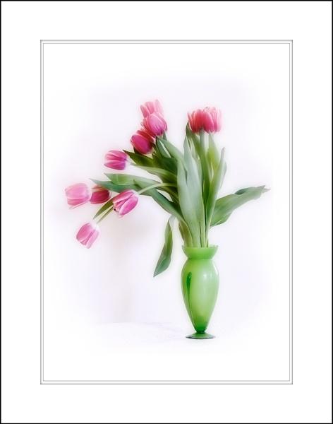 Spring by LisaRose