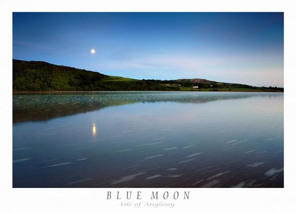 Blue Moon by Alfoto