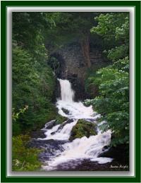 Clapham Waterfall