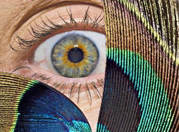Aye one Eye by LlesdnilLegin