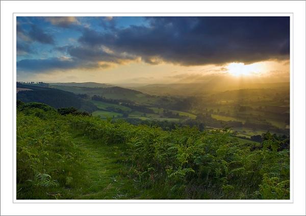 Sunburst by Rob_Taylor