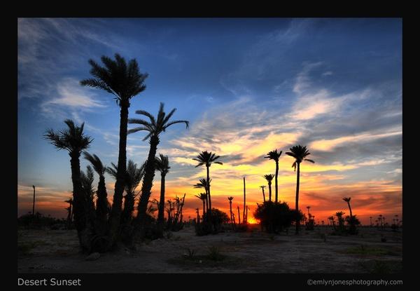 Desert Sunset by Elwin