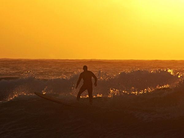 Golden Surfer by lornem
