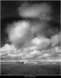 Dorset Downs