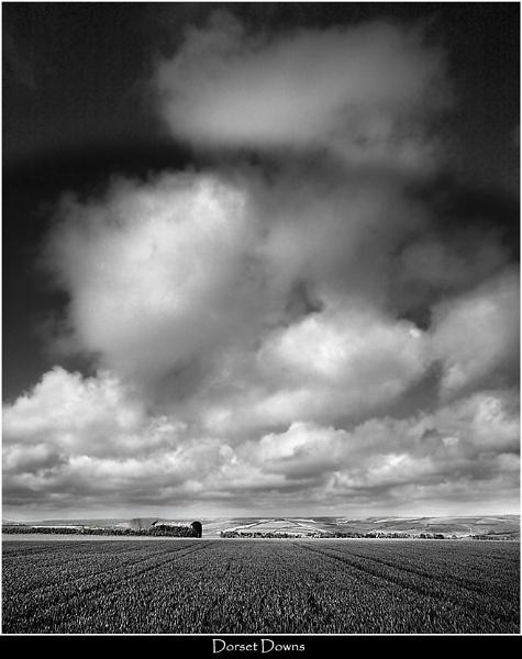 Dorset Downs by Kris_Dutson