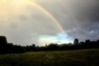 Rainbows by bracken_donna