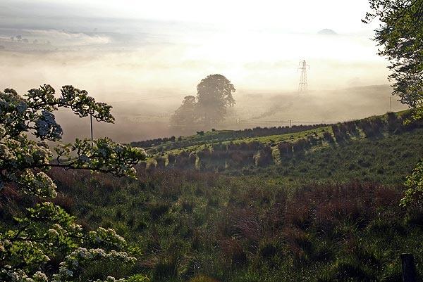 Misty Dew Sunrise by DaveH64