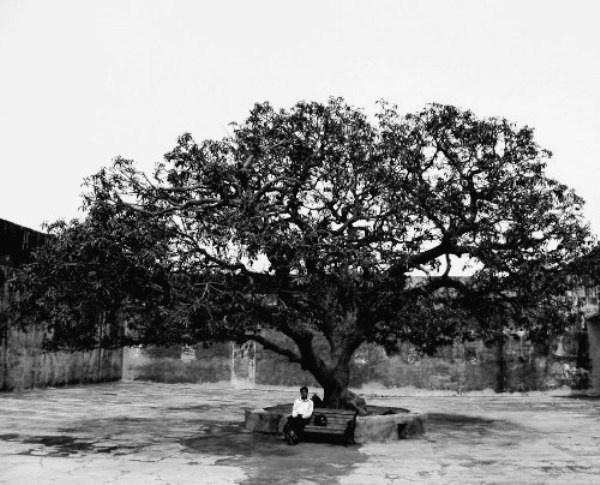 lonely....... by jairathore