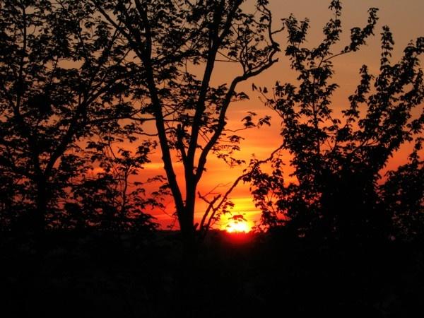 Horizon Sunset by ChrisPhotos145
