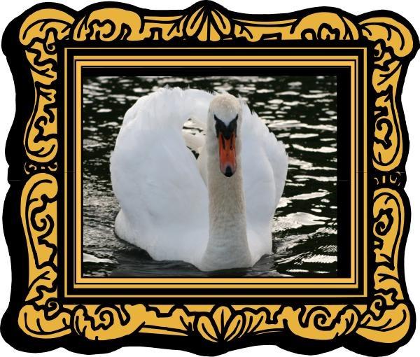 Swan by SRC15