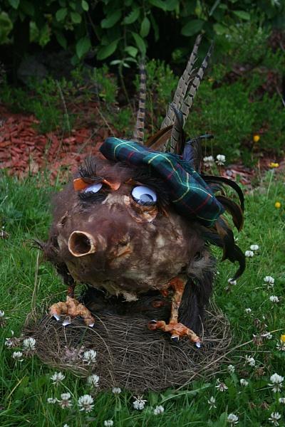 Wild Haggis !! by colin