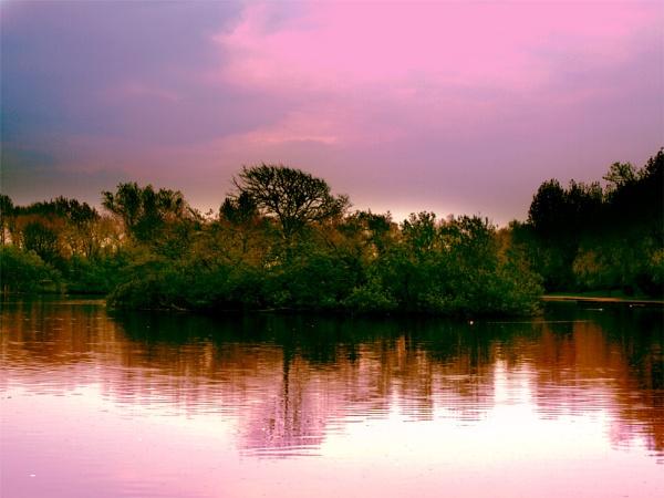Island In The Lake by chensuriashi