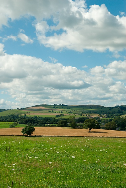 Meadows and Moors by Tony_W