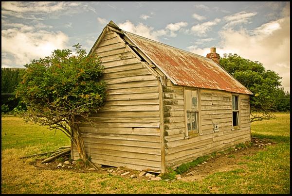 Old Shearers Cottage by richard loader