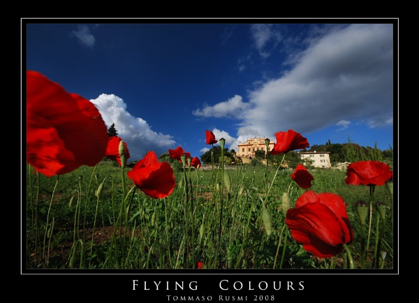Flying Colours by rusmi
