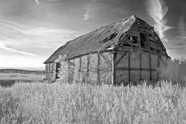 That Barn by Kim Walton