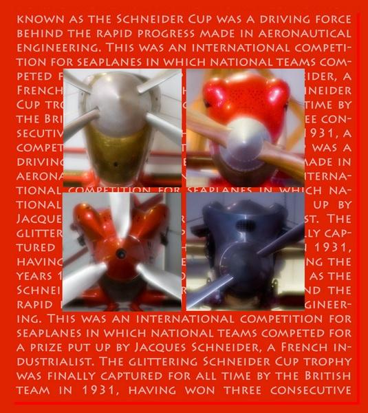 Schneider Cup by Phoebecat
