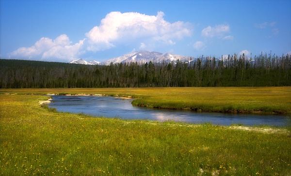 Yellowstone by LisaRose
