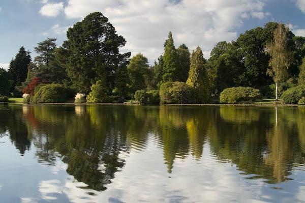 Lake reflection by RSaraiva