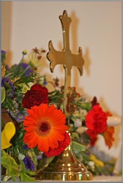 Flower Festival by rmr