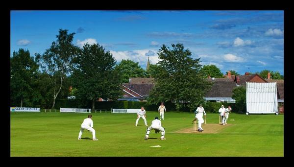 Village Cricket by alwolf